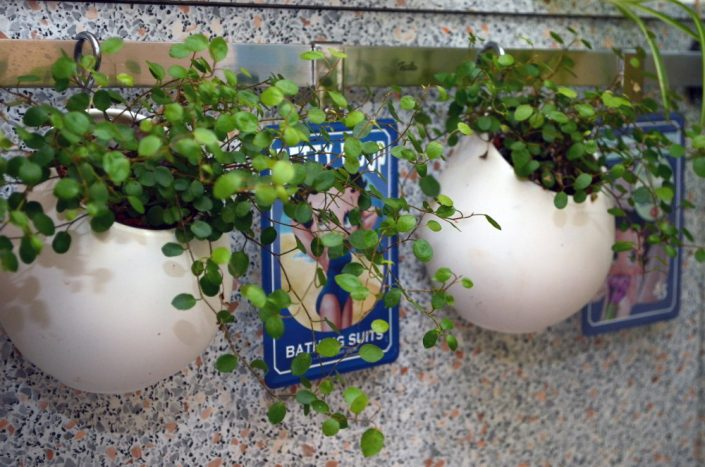 Planzenampel fürs Vertical Gardening - Ein Ikea Hack mit Asker Behältern