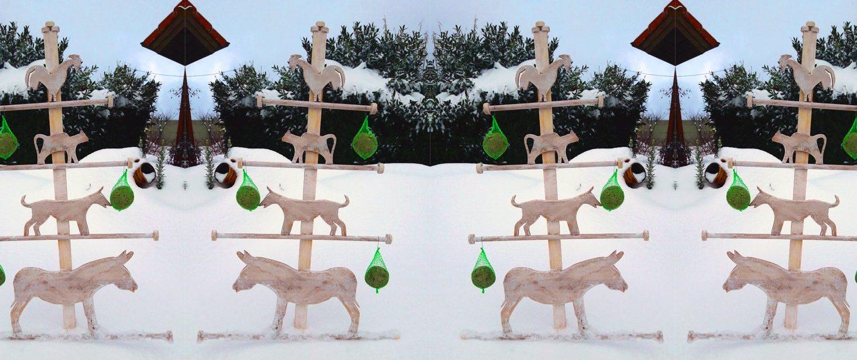 Futterstation für Vögel und Deko: Einen Friesenbaum selber machen