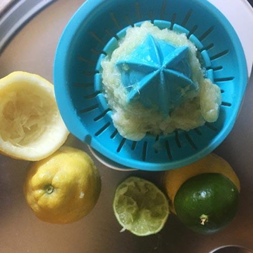 Eine Zitronenpresse mit Fruchtfleisch. Daneben liegen ausgepresste und noch intakte Zitronen und Limetten